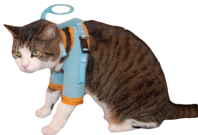 cat grooming harness