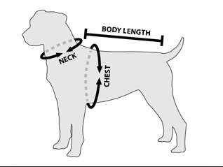 pet grooming harness